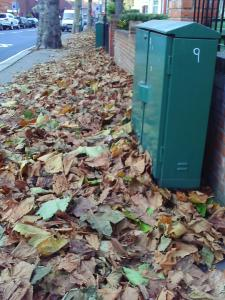 Leaves piling up at Brondesbury Park